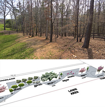 Landscape Design for a Woodland Border in Dawsonville GA