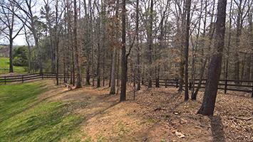 Landscape Design for a Woodland Border in Dawsonville GA